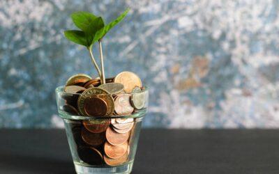 Idei de afaceri profitabile, cu bani putini pentru: online, acasa, femei, tineri etc.